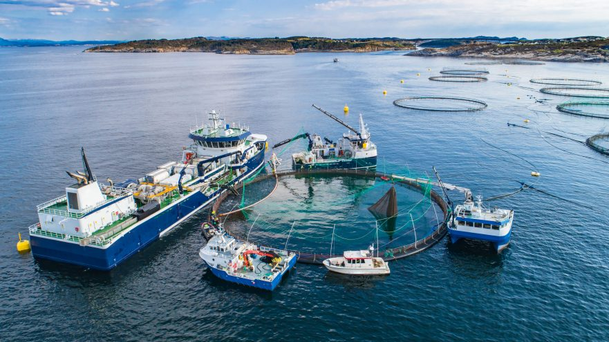 Autonomous aquaculture fish farm support vessels, installed with Sea Machines products